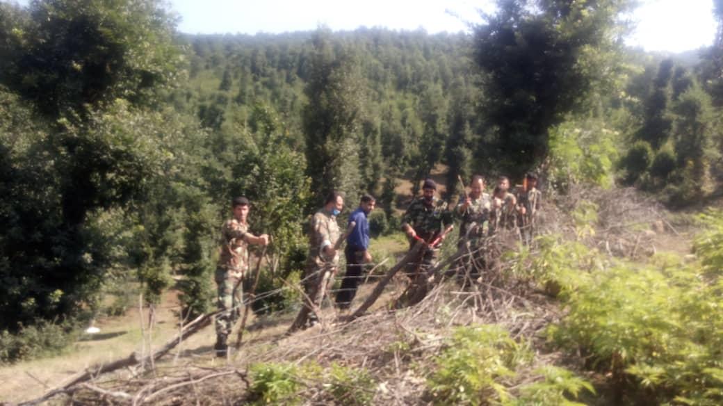 حدود ۱۱ هزار مترمربع از اراضی ملی پلنگ دره رفع تصرف شد